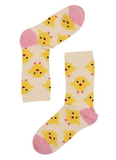 The Socks Company Çorap